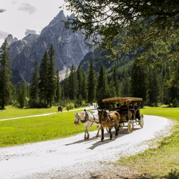 Carrozza in Val Fiscalina