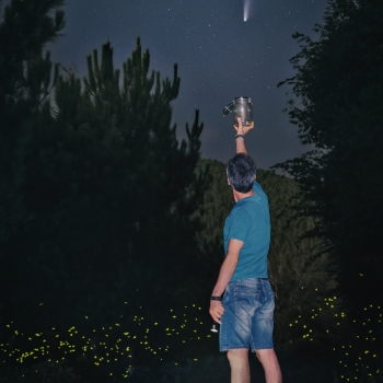 Catching the comet