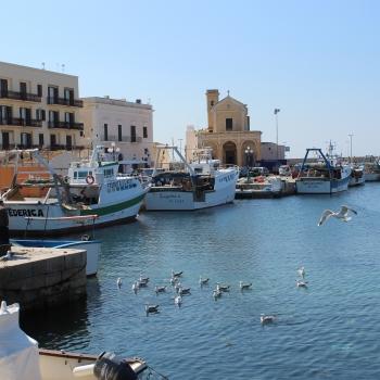 foto delle mie città preferite Lecce e Gallipoli