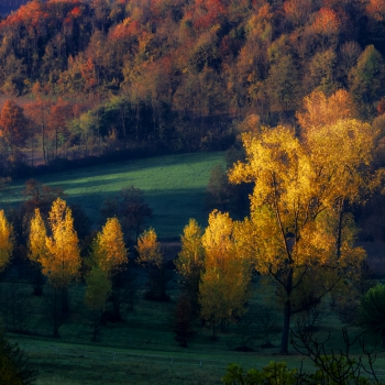 luce d'autunno