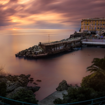 Nervi's Colors