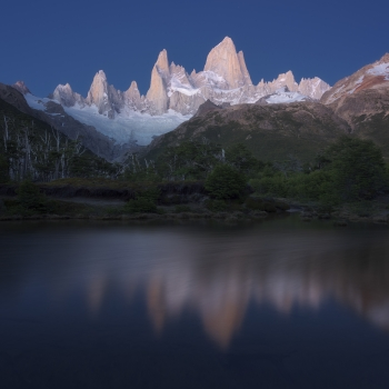 ora blu prima dell'alba sul Fitz Roy - foresta poincenot