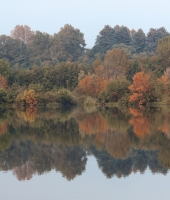 Riflessi d'autunno