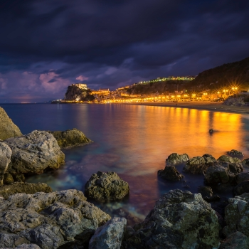 Scilla by Night