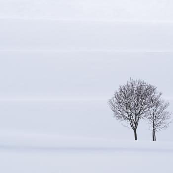 Sinfonia d`inverno