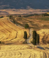 Summer in Val D'Orcia