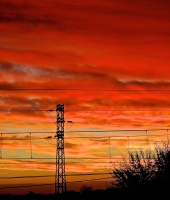 Sunset with electric cables