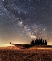 The cypresses and the milkyway